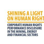 Shining a light on human rights disclosure