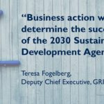Reporting on the SDGs Action Platform