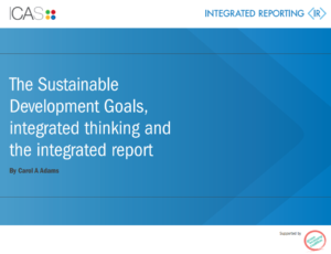 Image result for The Sustainable Development Goals, integrated thinking and the integrated report