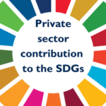 Reporting on the SDGs: measuring today's contributions and educating tomorrow's leaders