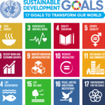 Corporate Reporting on the SDGs: Mapping a Sustainable Future
