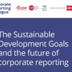 Standard setters and framework providers to support better reporting on the Sustainable Development Goals