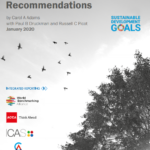 UN Sustainable Development Goals Disclosure Recommendations