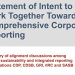 A powerful interim step towards a single, coherent global set of reporting standards