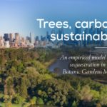 Another step towards more accurate sustainability reporting: new model to estimate carbon capture by trees